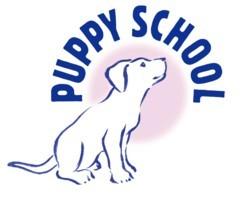 1013451504-PS Logo - colour small